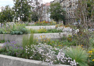 Bepflanzung von öffentlichen Raum