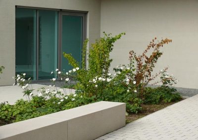 Garten-Landschaftsbau-Kolb-Nuernberg-Johannis-5